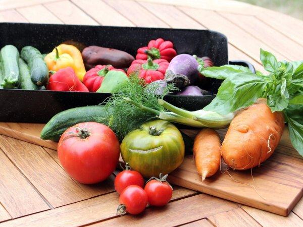 vegetables-nieuiwsbericht